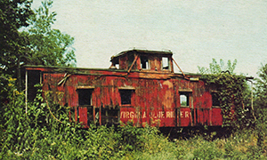 VBR Caboose 2 Piney River - weeds c1978