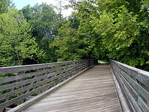 VBR Trail - Bridge