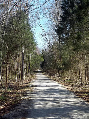 VBR Trail March 31, 2011